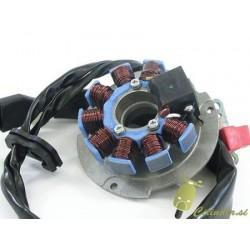 Navitje za piaggio/gilera maxi agregate - 2T (vodno hlajenje)