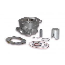 CILINDERKIT - MALOSSI TEAM 50cc LC Ø 39,8mm, aluminium, zatič 12mm, za modularno glavo