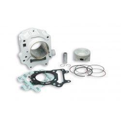 CILINDERKIT - MALOSSI 179cc za ROTAX engine za APRILIA Leonardo 125-150/Scarabeo 125, Ø 67,0mm, aluminium, 2 batna obročka,