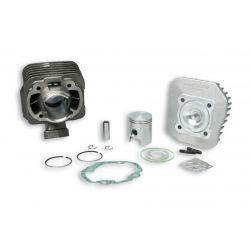 CILINDERKIT - MALOSSI 50cc za PEUGEOT vertical 50cc 2t AC Ø 40,0mm, cast iron, 2 batna obročka, zatič 12mm, z glavo cilindra