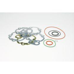 SET TESNIL - MALOSSI MHR TEAM za cylinder M3112381 /M3112386 50/79cc za MINARELLI AM 3-6 2t, LC različna debelina, O-rings