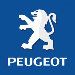 Minarelli/Peugeot